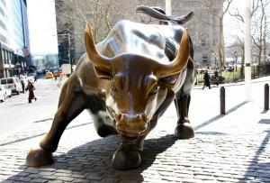 Charging bull new york city nyc