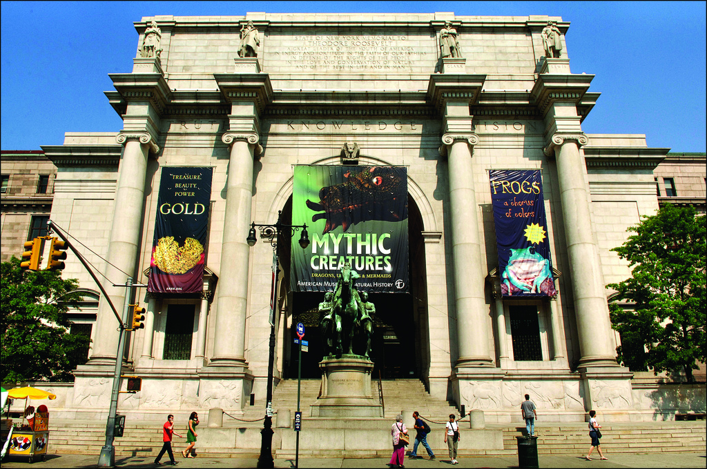 American Museum of Natural History (AMNH) – Where is it, hours, what to see and more