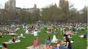 Central Park in the Summer - Picnic Time
