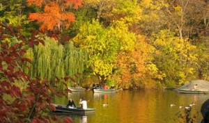 Row Boating and Kayaking - Central Park Fall Colors