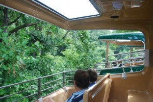The Bronx Zoo Monorail