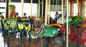The Bug Carousel