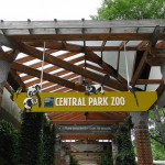 Central Park Zoo Hours Tickets and More - A Cozy NYC Zoo