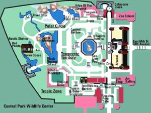 Central Park Zoo Map - What to See and Where to See